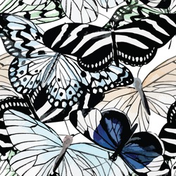 Beautiful fashion tropic insect butterfly hand drawn watercolor. Print jungle animal in black and white style on a white background. Seamless vector floral pattern