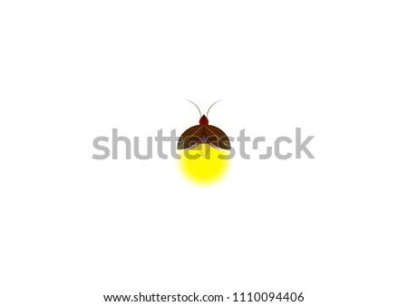 beautiful firefly spread wings