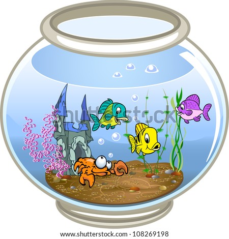 Beautiful fish swim in a fishbowl with water.At the bottom of the crab, seaweed and decoration. On a white background.