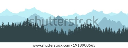 beautiful forest on background