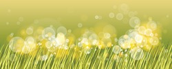 Beautiful green grass with bokeh blurred lights of dew on it vector illustration, morning sunlight, nature field and meadow background, ecology, grassland.