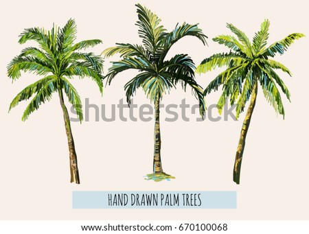 Beautiful hand drawn botanical vector illustration with palm trees. Isolated on white background.