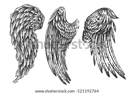 Beautiful hand drawn illustration with wings of bird. Us for card, poster, print for t-shirt, smart phone, handbag, music CD.