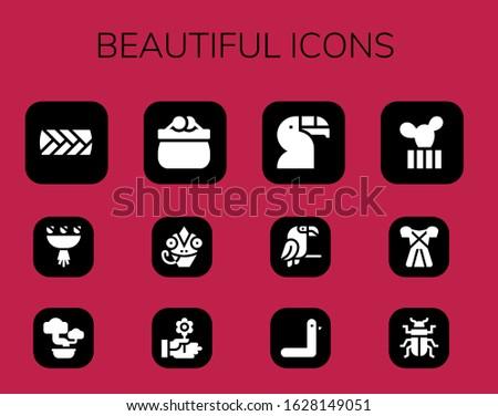 beautiful icon set 12 filled