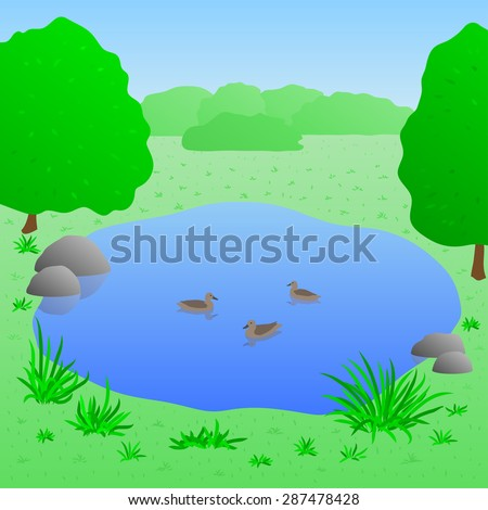 beautiful lake with ducks