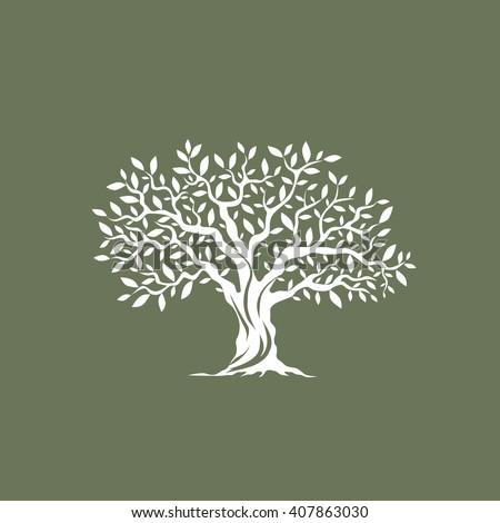 Beautiful magnificent olive tree silhouette on grey background. Modern vector sign. Premium quality illustration logo design concept.
