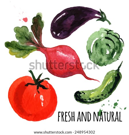 beautiful painting   vegetables