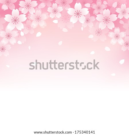 Beautiful Pink Cherry blossom background File contains Transparency Gradients Gradient Mesh