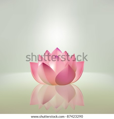 Beautiful pink lotus flower with reflection