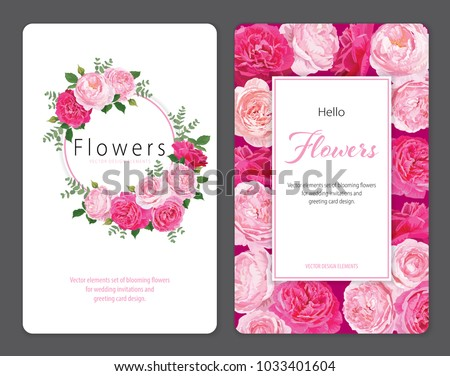 Beautiful pink roses flower background template. Vector set of blooming floral for wedding invitations and greeting card design.