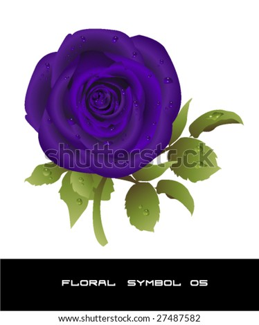 purple rose wallpaper. Beautiful purple rose vector