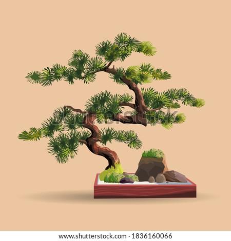 Beautiful realistic tree.Tree in bonsai style. Bonsai tree on the red box. Decorative little tree vector illustration. Nature art Photo stock ©