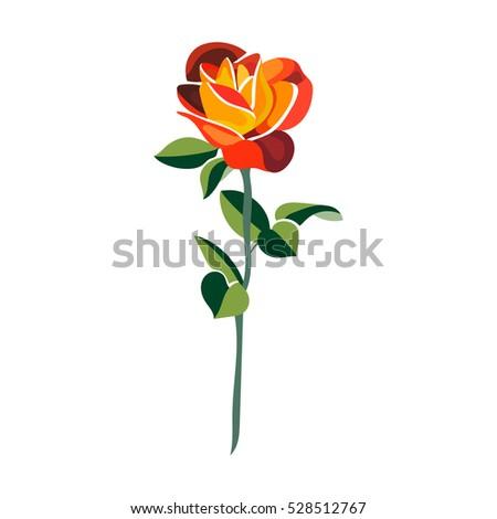 beautiful red orange rose