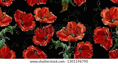 beautiful red poppies flowers