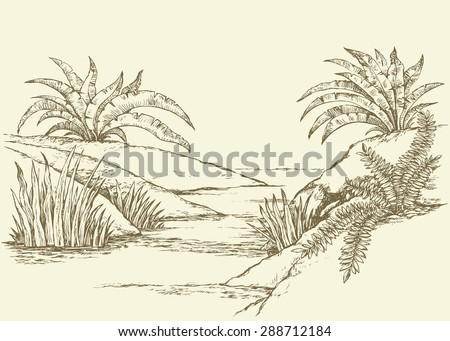 beautiful scenery small rivulet