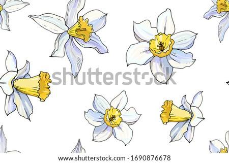 beautiful seamless daffodil