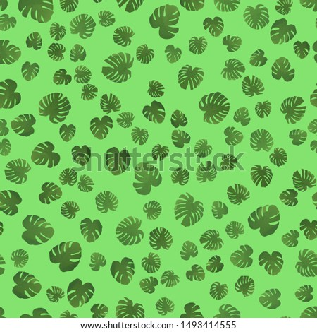 Beautiful seamless pattern with monstera. Monstera for decorative design. Green natural plant. Jungle foliage illustration. Green background. Summer beach floral print. Jungle floral illustration.