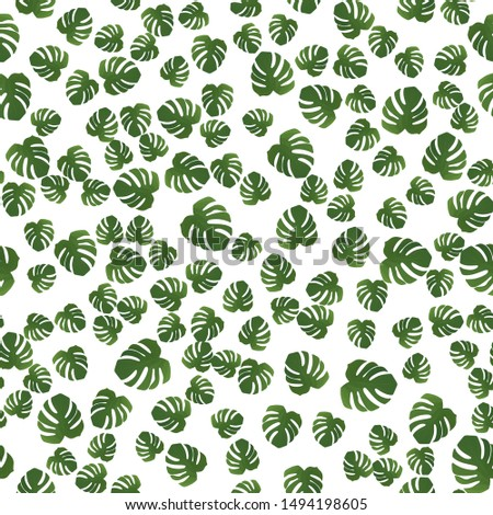 Beautiful seamless pattern with monstera. Monstera for decorative design. Green natural plant. Jungle foliage illustration. White background. Summer beach floral print. Jungle floral illustration.