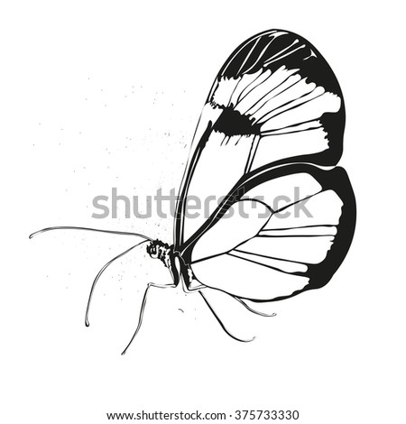 Beautiful silhouette butterfly.vector illustration