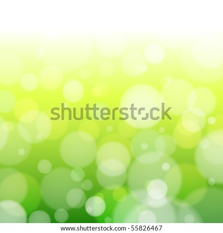 beautiful spring forest bokeh
