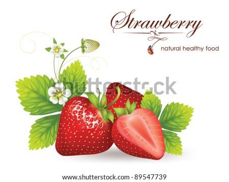 beautiful strawberries vector