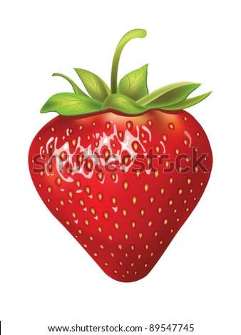 beautiful strawberries vector