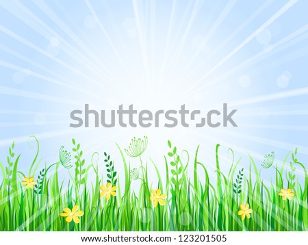 Beautiful Summer Meadow Landscape. Vector Illustration of Grass at Lawn With Blue Sky