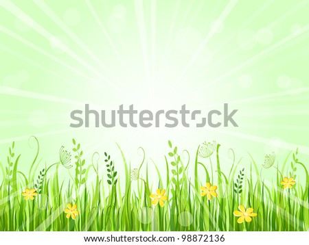 Beautiful Summer Meadow Landscape. Vector Illustration of Grass at Lawn With Green Sky
