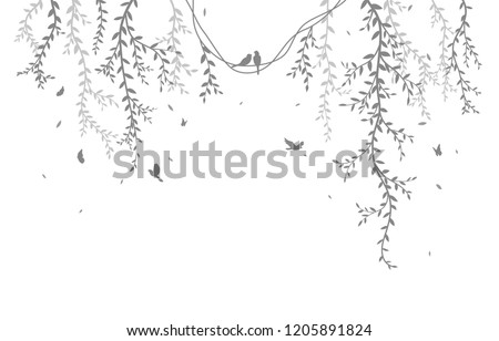 beautiful tree branch with