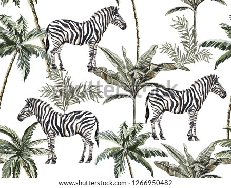 Beautiful tropical vintage illustration background with palm trees, banana trees,  zebra. Isolated on white background. Exotic jungle wallpaper.