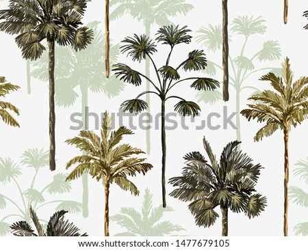 beautiful tropical vintage palm