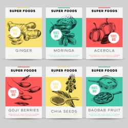 Beautiful vector hand drawn super foods card set. Detailed trendy style images. Modern sketch elements collection for packaging design.