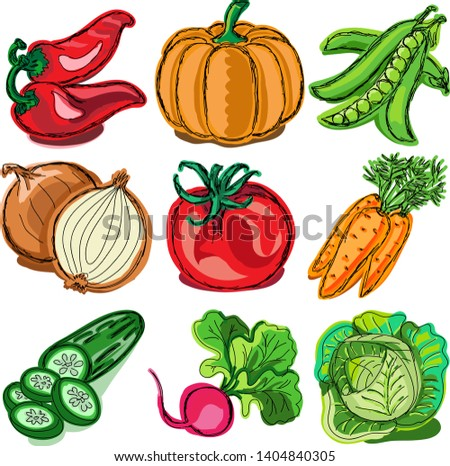 Beautiful vector illustration with fresh colorful vegetables in green leafs #1404840305