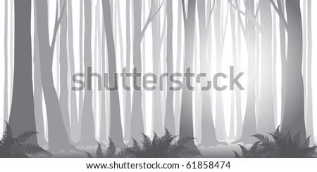 beautiful vector misty forest banner in gray-scale - stock vector