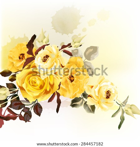 beautiful vector roses in