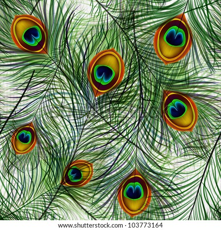 Beautiful vector seamless pattern with peacock feathers. EPS 10