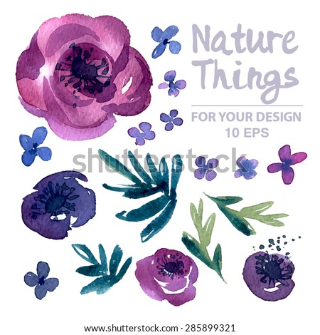 beautiful vector set flowers