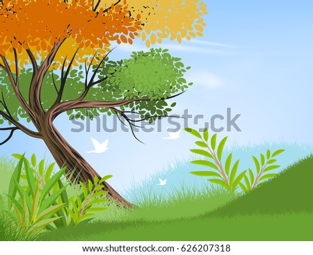 beautiful view tree and nature