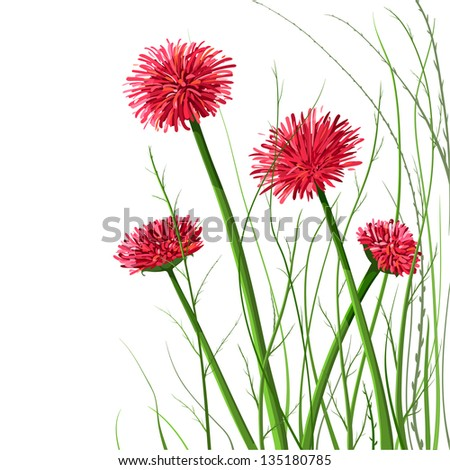 Beautiful Wild Flowers Illustration. Vector decorative flowers and grass illustration. EPS8. No effects.