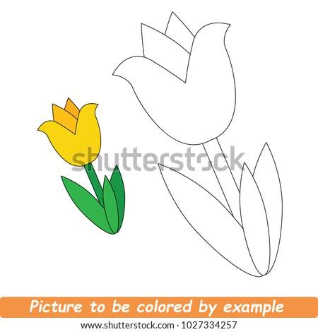 beautiful yellow tulip to be