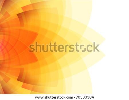 beauty concept sunflower