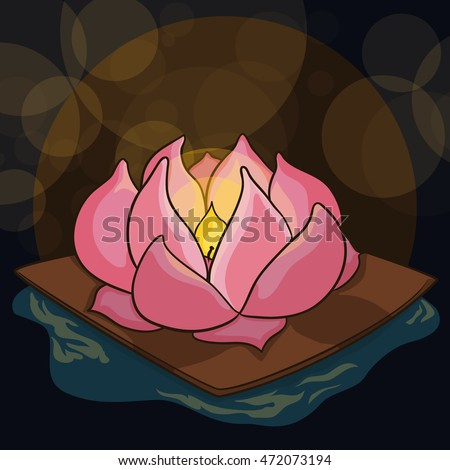 beauty lotus floating in the