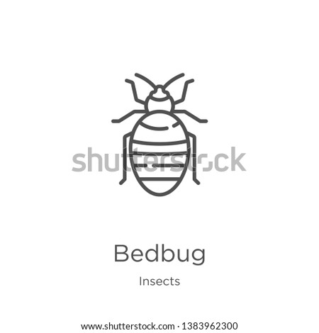 bedbug icon. Element of insects collection for mobile concept and web apps icon. Outline, thin line bedbug icon for website design and mobile, app development