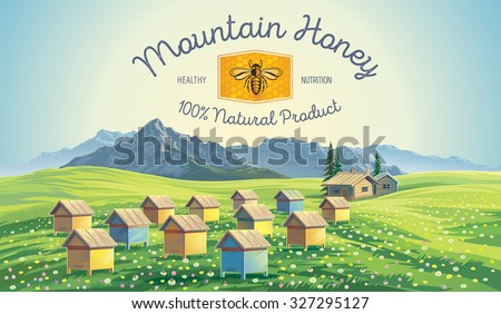 bee apiary in the mountains
