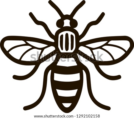 Bee as black and white icon can be used as a logo of Manchester city