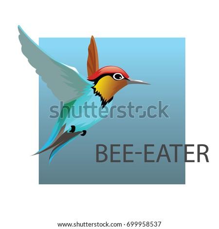 bee eater bird vector