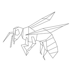 Bee insect polygonal illustration on white background. Geometric linear bee