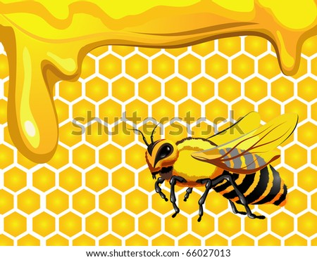 Bee with drops of honey and honeycomb hexagon shapes