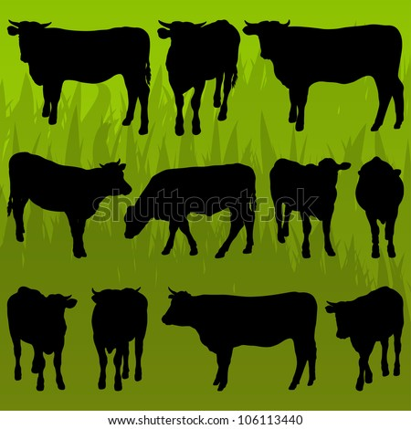 Beef cattle detailed silhouettes illustration collection background vector