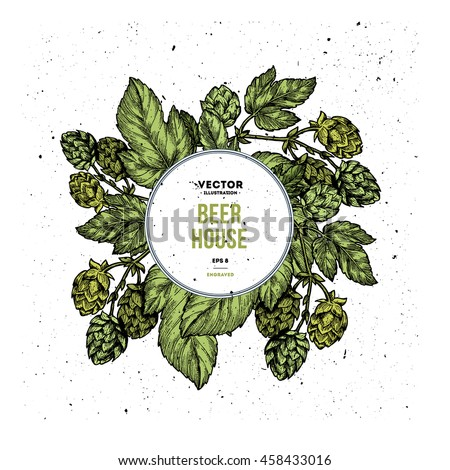 Beer hop vertical banner collection. Engraved style illustration. Vintage beer design templates. Vector illustration